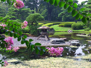 traditional japanese garden - japan